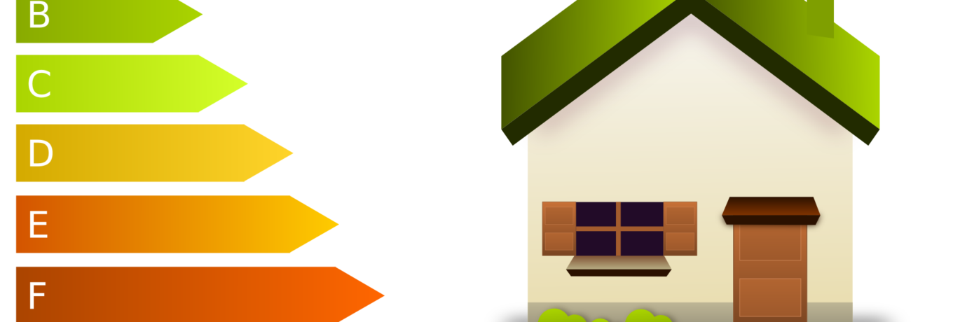 Being Energy Efficient in the Home